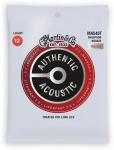 Струны для гитары MARTIN MA540T Authentic Acoustic Lifespan 2.0 92/8 Phosphor Bronze Light (12-54)