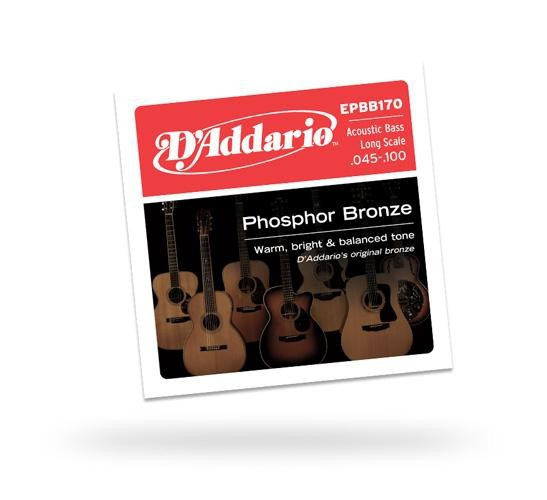 D'ADDARIO EPBB170 Acoustic Bass Phosphor Bronze 4str