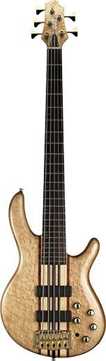Cort A5-Custom20TH Nat w/case