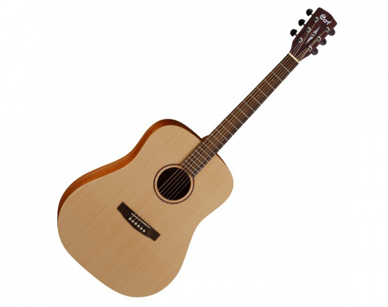Акустическая гитара CORT EarthGrand OP w/bag