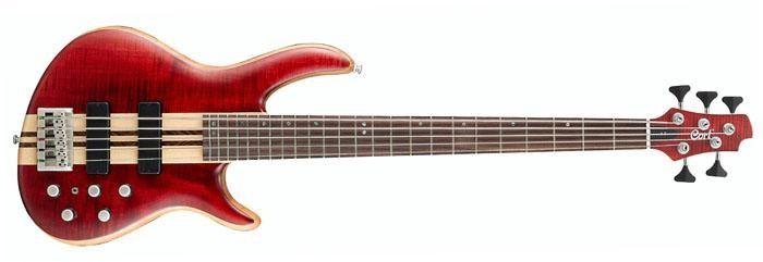 Бас-гитара CORT A5 OPBC